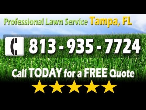 Lawn Service Tampa FL - (813) 935-7724 The Best Lawn Care Service in Tampa