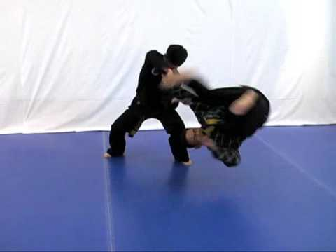 Hapkido Training Video Preview (Eagle Talon Hapkido) Image 1