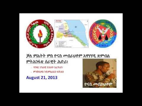 ENSF N EMDJ Yonas Mebrahtom Interview Aug 21 2013