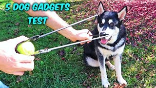 5 Dog Gadgets Put to the Test - Part 10