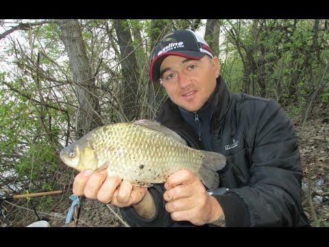 как поймать крупную рыбу на фидер