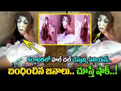 Alien Shocking Video Hulchal In Kerala - Karnataka Border | Top Telugu Media
