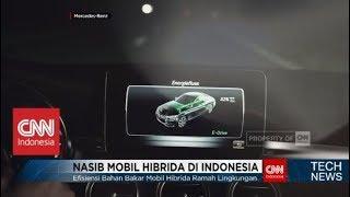 Meski Ramah Lingkungan, Nasib Mobil Hibrida di Indonesia Masih Tergantung Pemerintah - TechNews