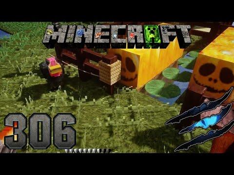Minecraft #306 - Schrödigers Krankheiten Ω Let's Play