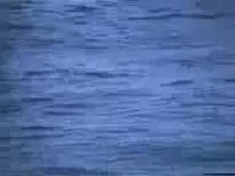 pesca y trajedia