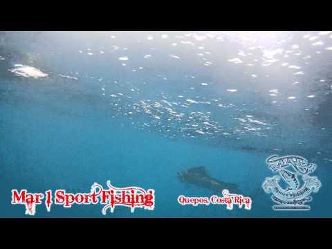 Mar 1 Sport Fishing Quepos January 17 2013-2