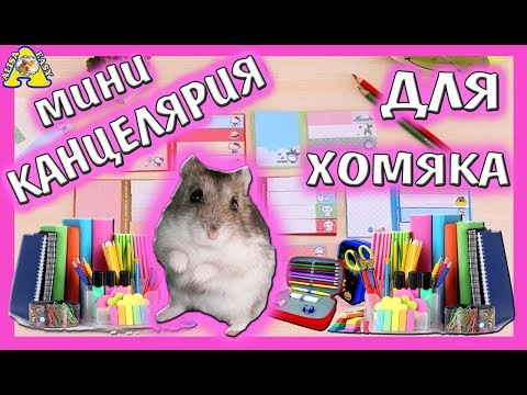 ХОМО - BACK TO SCHOOL / бек ту скул 2018 / канцелярия для хомки / HAUL  / от Alisa Easy VLOG