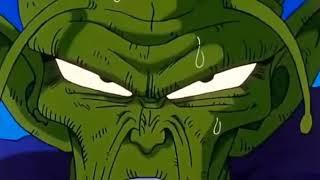 Piccolo and kami fusion ....