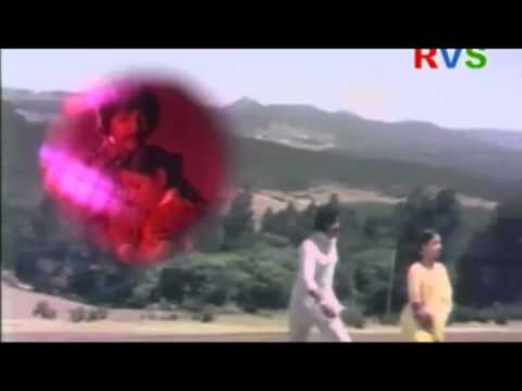 Muddu Mullu telugu Video hot song