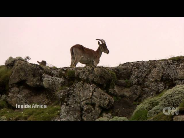 CNN - Breathtaking views of Ethiopia's Simien Mountains
