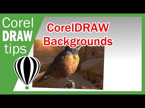 Changing Backgrounds in CorelDraw