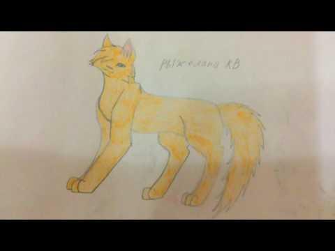 Конкурс рисунков по котам воителям