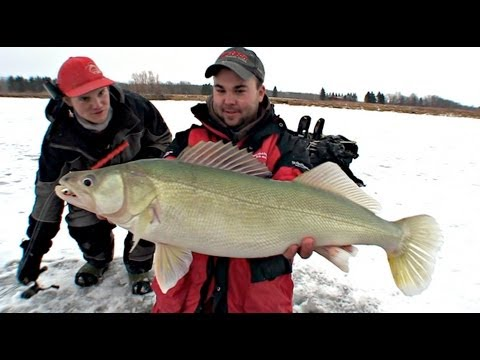 Ridiculous Flasher Jig Walleye - Uncut Angling - Dec. 23, 2012