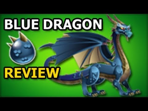 BLUE DRAGON Dragon City Egg and Level Up Fast Review Recruitment Tavern