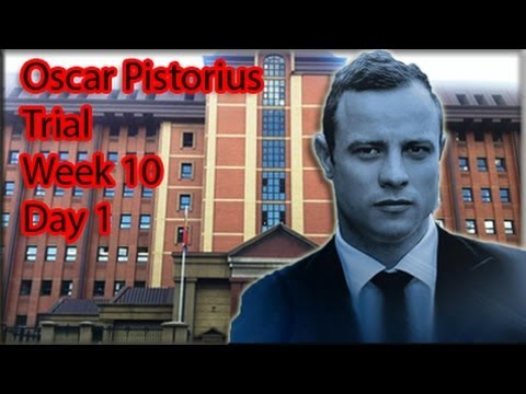 Oscar Pistorius Trial: Monday 7 July 2014, Session 2