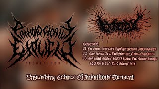UNLEASHING ECHOES OF INIQUITOUS TORMENT [OFFICIAL 5-WAY SPLIT STREAM] (2021) SW EXCLUSIVE