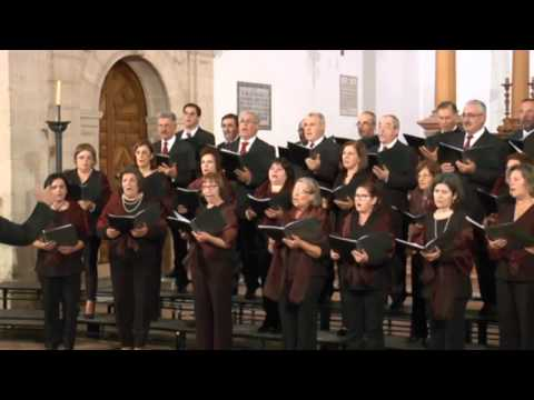 "Polifonías: I Festival Internacional "" Ciudad de Antequera "". Orfeau de Loreiro - Portugal"