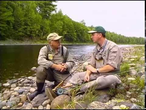 Miramichi Atlantic Salmon | New Brunswick