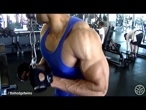 Chest Triceps and Lats Workout