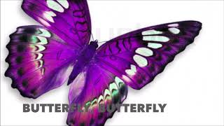 Simple English Songs - Butterfly Butterfly - Tinnie Lilies