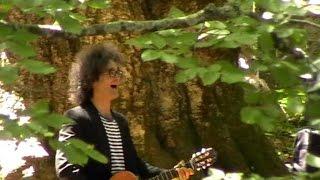 Simone Cristicchi - Il guarito (cover Gaber) (Sega di Ala (TN), 03/07/2011)