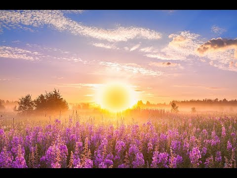 GOOD MORNING  ➤ 528Hz Positive Energy ➤ Soothing Beautiful Deep Morning Boost Meditation