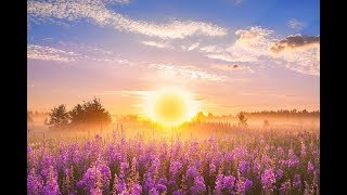 GOOD MORNING MUSIC ➤ 528Hz Positive Energy ➤ Soothing Beautiful Deep Morning Boost Meditation Music