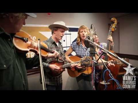 Foghorn Stringband - You Didn't Have To Go [Live at WAMU's Bluegrass Country]