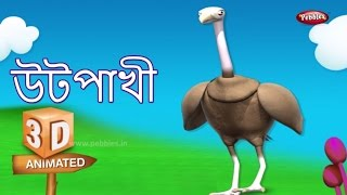 Ostrich Rhyme in Bengali | বাংলা গান | Bengali Rhymes For Kids | 3D Bird Songs in Bengali | Poems