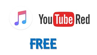 How to play YouTube offline FOR FREE/How to Download Music into music library free!
