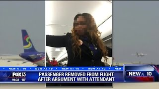 White Man Kicked Off Spirit Airlines Plane-Negress Flight Attendant Disciplined For Hateful BLM