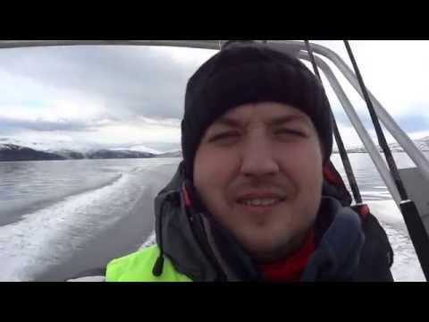 Морская рыбалка в Норвегии Тромсё Апрель 2016.Палтус.Треска.Окунь.