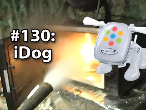 Is It A Good Idea To Microwave An iDog?