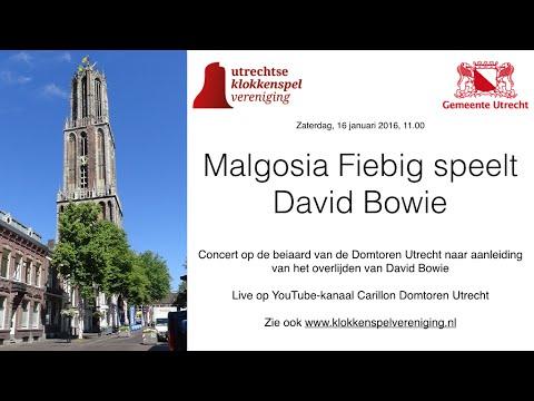 David Bowie - Carillon Domtoren Utrecht