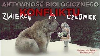 AKTYWNOŚĆ BIOLOGICZNEGO KONFLIKTU (germańska med.)- CZŁOWIEK A ZWIERZĘ - Małgorzata Paluch © VTV