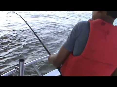 New Orleans Fishing Chronicle 3aa