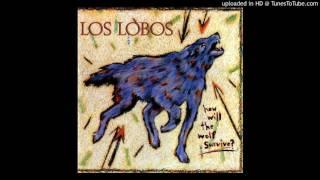 Watch Los Lobos The Breakdown video