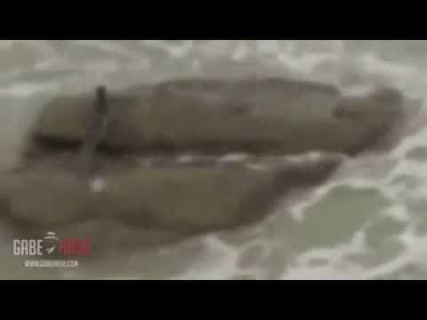 Sirena Encontrada En Israel ¿Es Verdad O No?