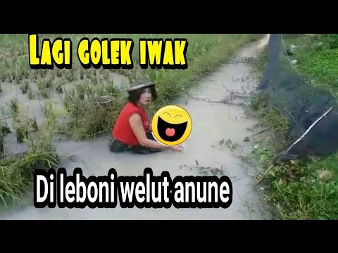Golek Iwak Malah..  ?