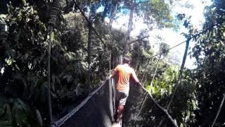 Canopy Walk @ Poring, Ranau