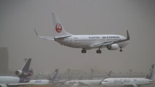 Storm!! JAL Boeing 737-800 Go Around & Crosswind Landing at Narita