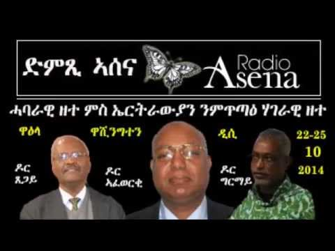 Voice of Assenna: Panel Discussion with Eritrean Forum for National Dialogue