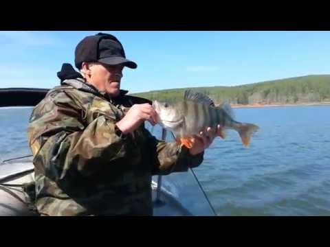 рыбалка на огуре квх