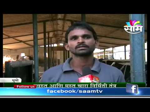 Uttam Machale's dairy and hydroponics technology success story