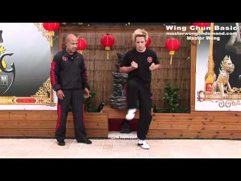 Wing Chun Mini Course Lesson 2 Image 1