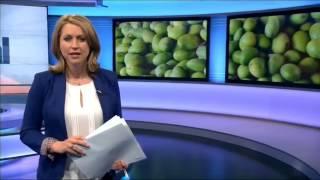 Karin Giannone presents Global on BBC World News