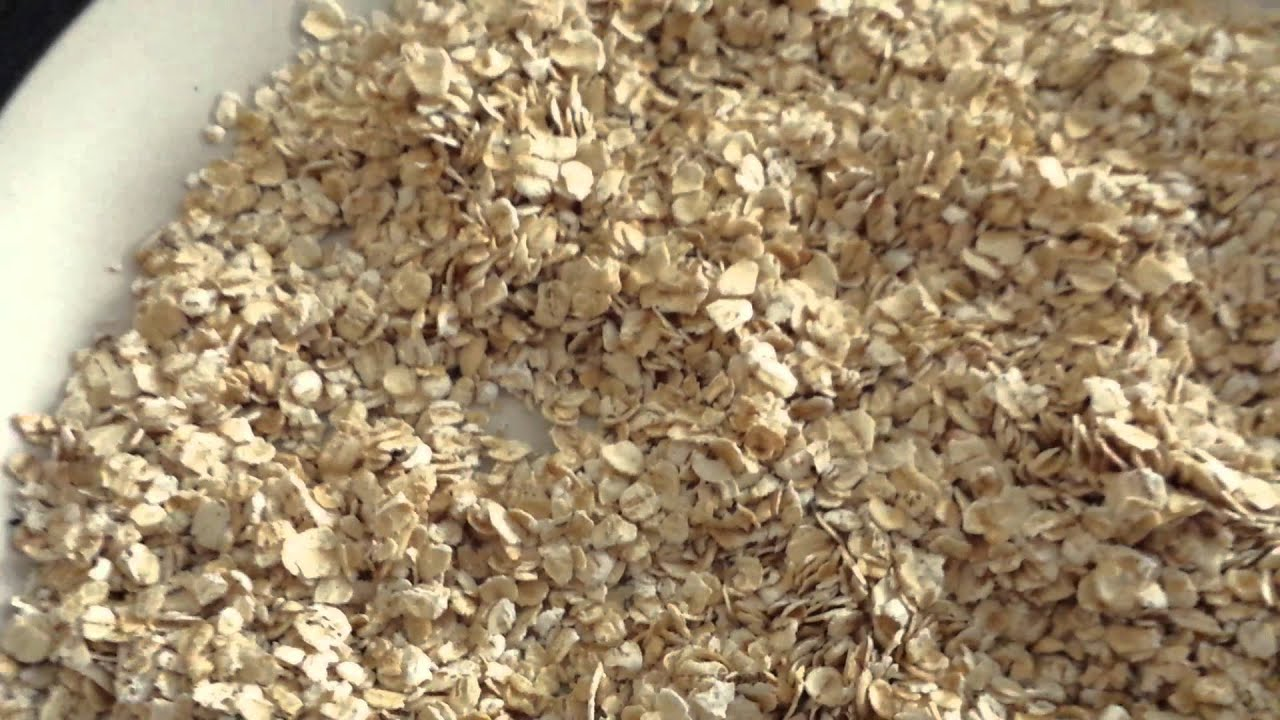 Bug infested oatmeal - YouTube