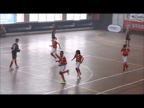 Sl Benfica-Sc Fribourg Match 68 1/4 de Finale U11 European Futsal Cup 2018