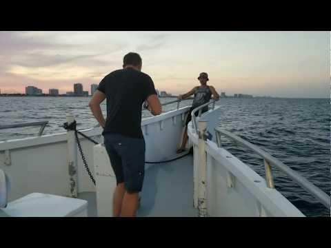 Как блогеры на рыбалку ходили)