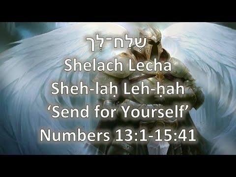 Torah Portion: Shelach Lekha